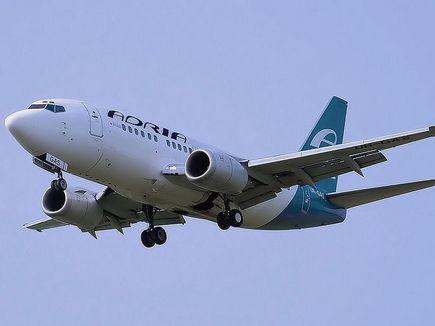 Для словенского перевозчика Adria Airways начали искать инвесторов