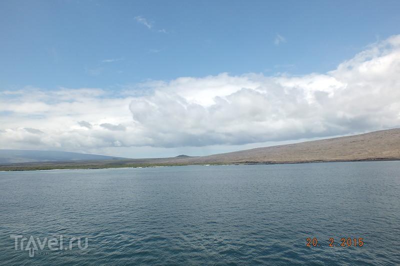 Галапагосы. Остров Исабела. Бухта Тагус / Эквадор