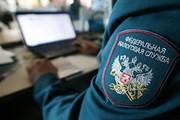 Акция во Внуково поможет пассажирам разобраться с долгами. // pravda-tv.ru