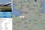 Самолеты Пулково // flightradar24.com